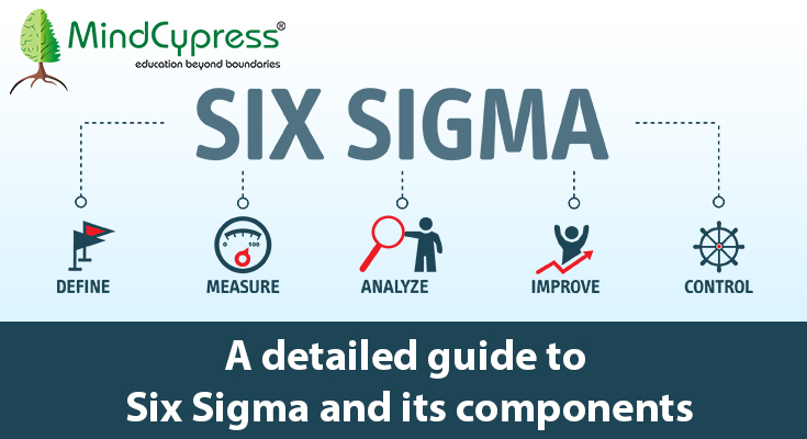 A detailed Guide to Six Sigma and its Components