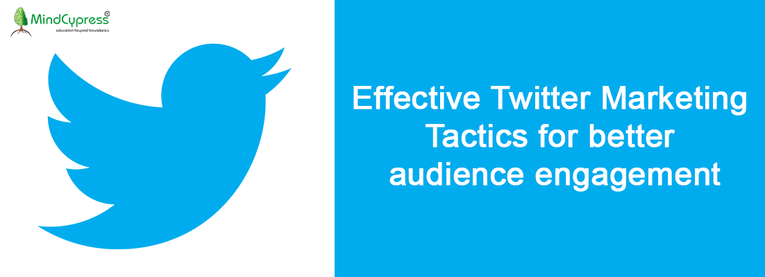 Effective Twitter Marketing Tactics for better audience engagement
