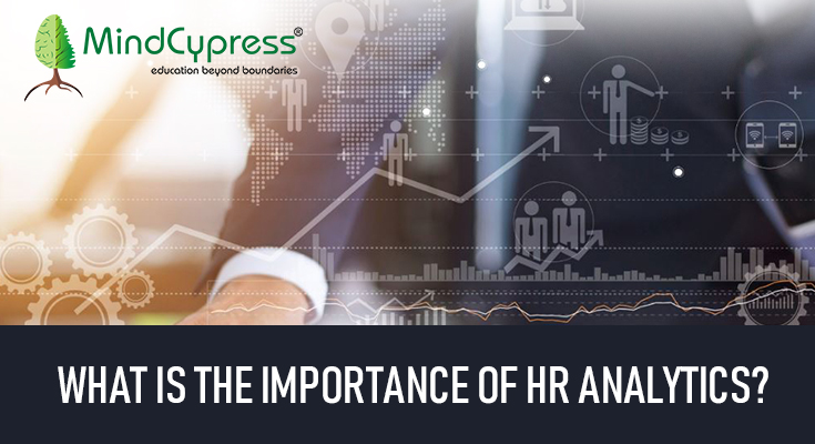 What-is-the-importance-of-HR-analytics.jpg